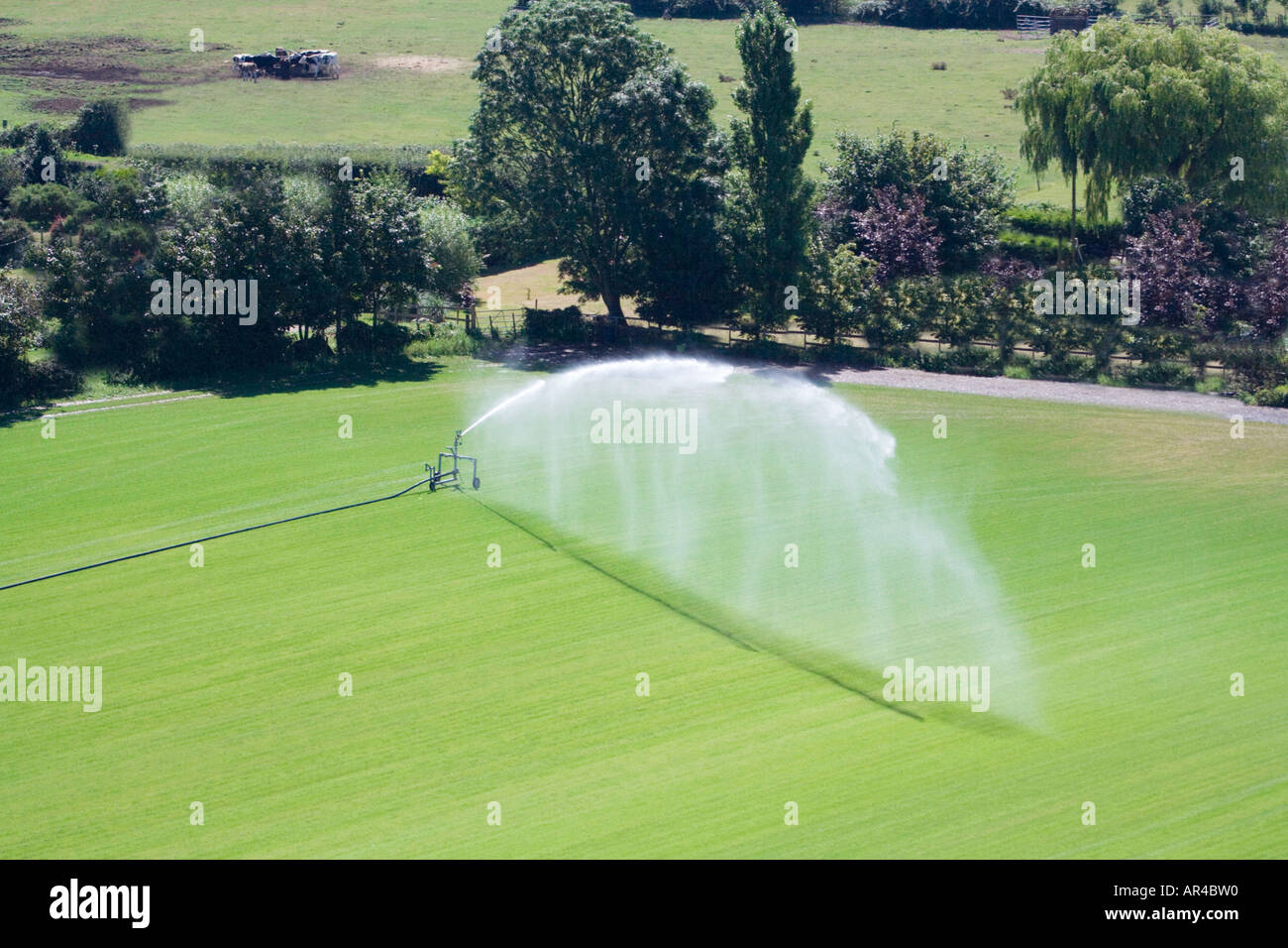 Aerial View Of Commercial Sprinkler. High Pressure Irrigation Of ...