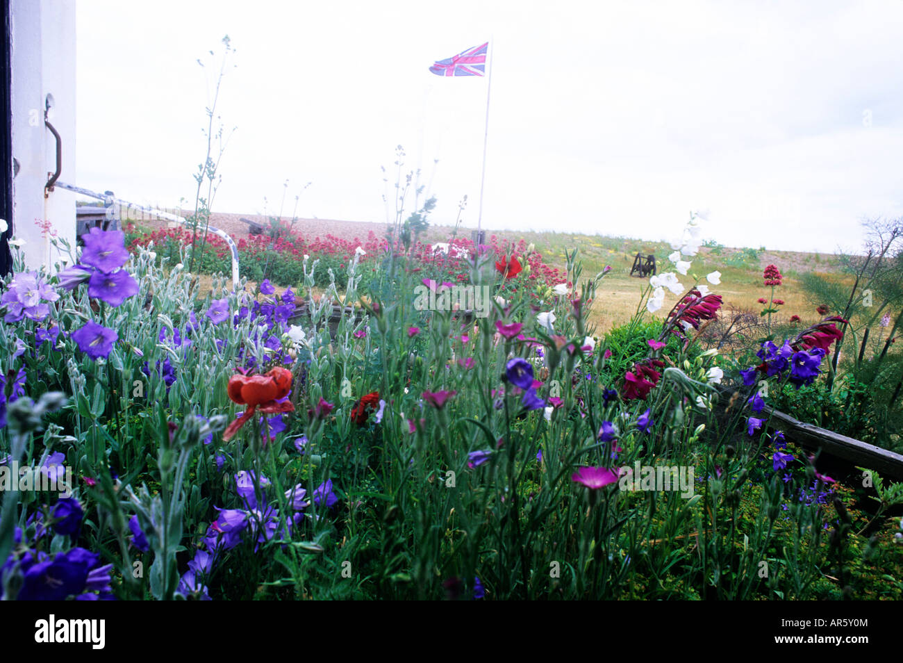 Red white blue flowers flag stock photos red white blue flowers seaside beach garden red white blue flowers flag union jack british campanula poppies plants coast coastal dhlflorist Gallery