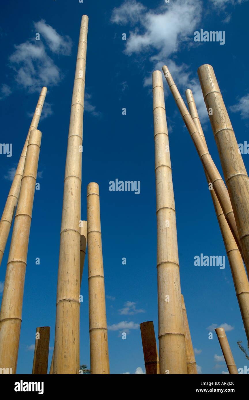 Bamboo poles stock photo royalty free image alamy