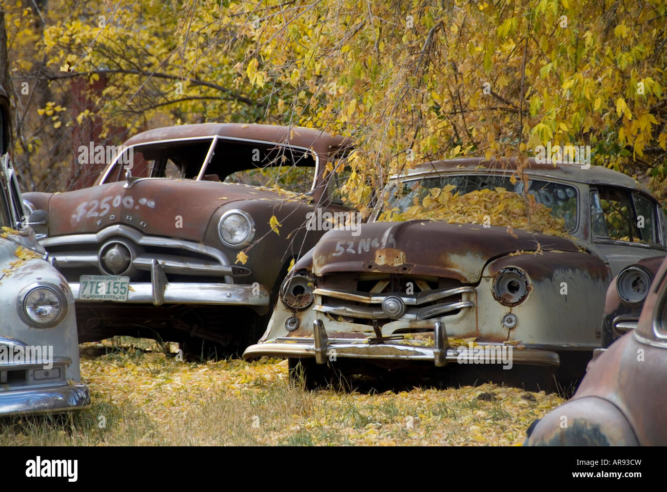 Classic Car Junk Yard Scrap Retro 1950 S 1950 Old Stock