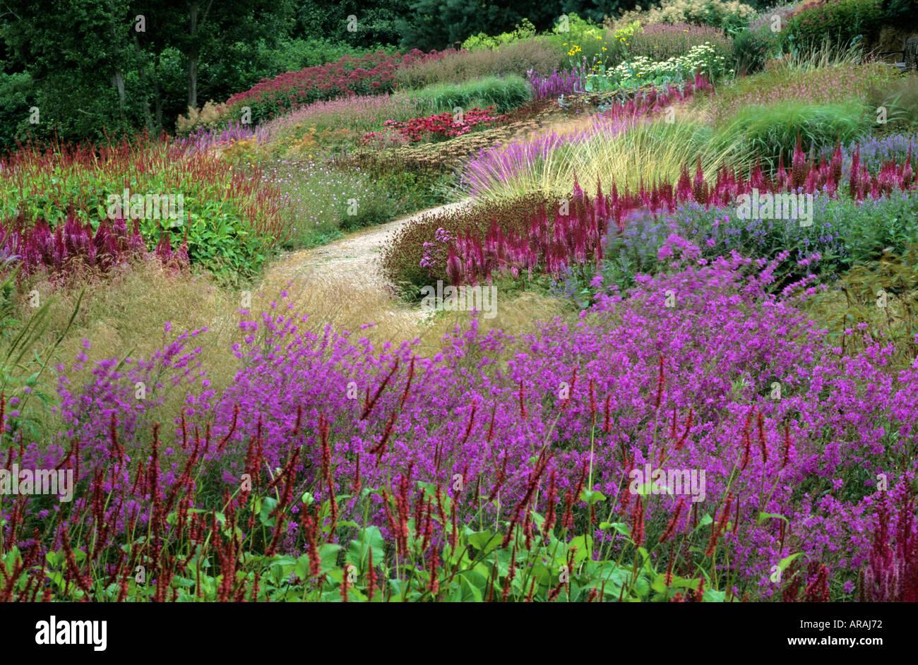 Pensthorpe millennium garden norfolk lythrum persicaria for Planting the natural garden piet oudolf