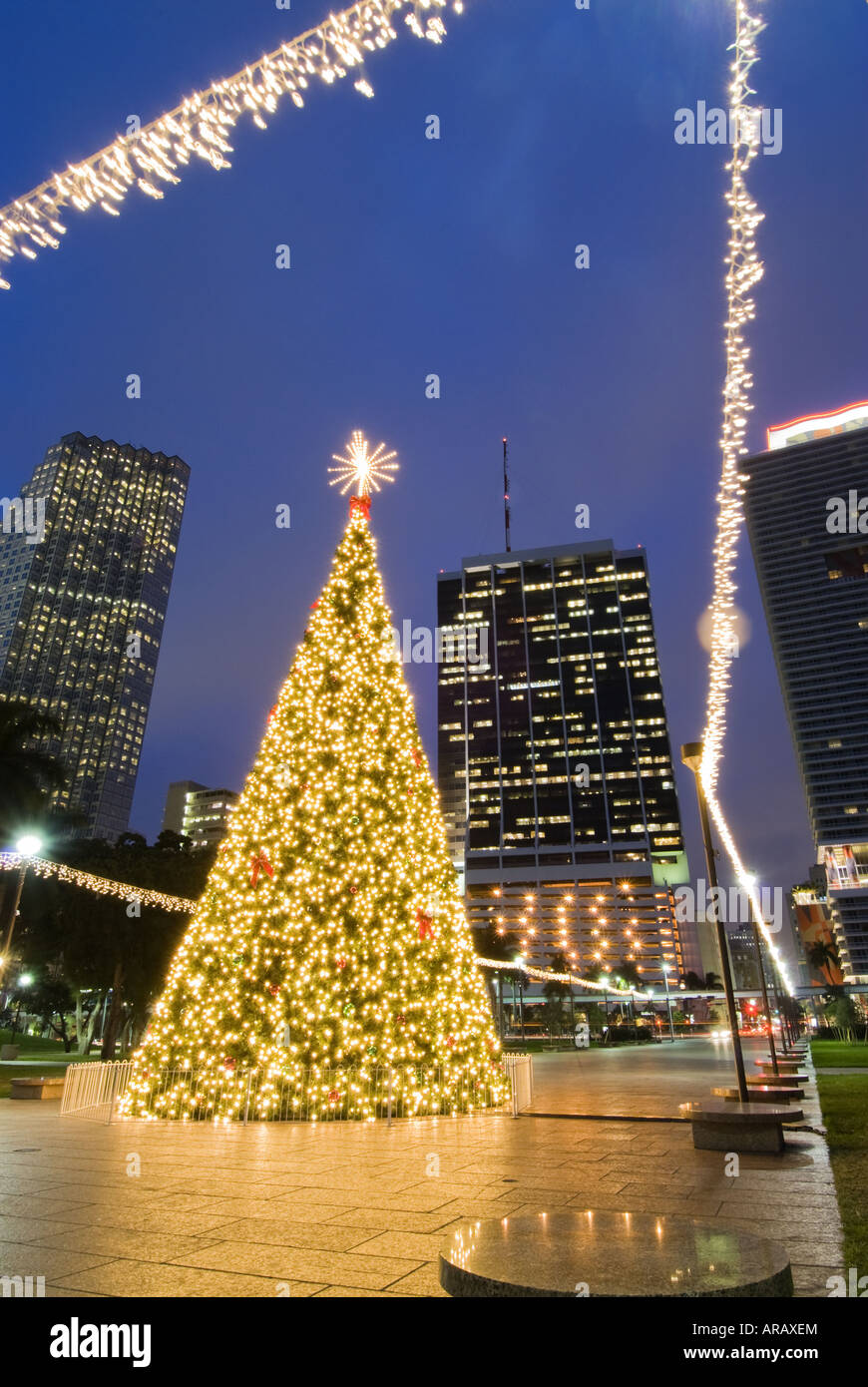Christmas Lights Illuminate Downtown Miami