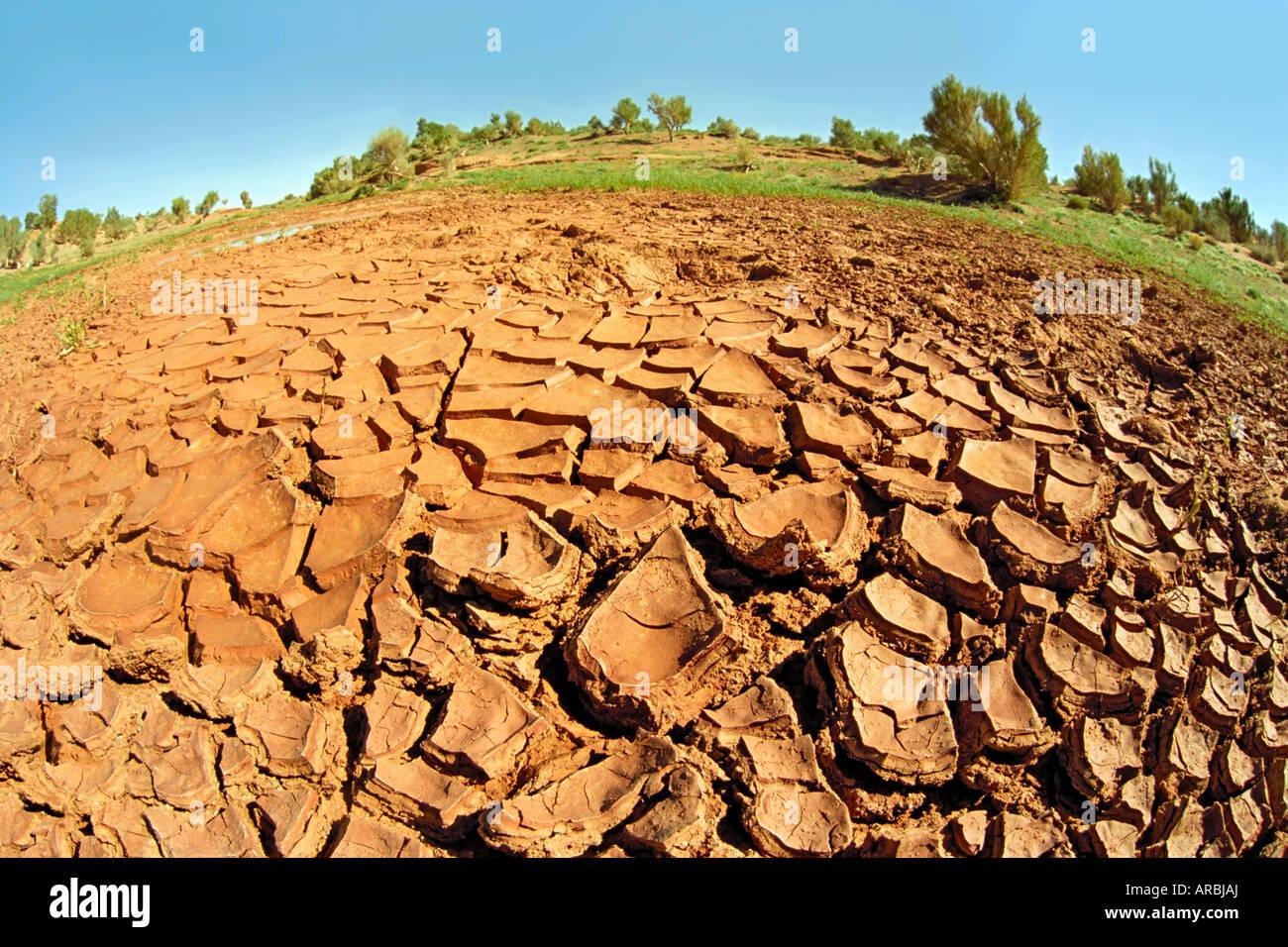 Erosion arid soil. Bayan Zag, Gobi desert, Gurvansaikhan ...
