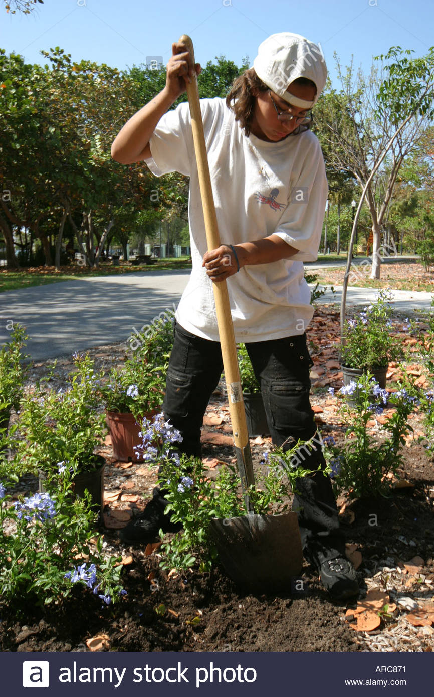 Superb Miami Beach Florida Teen Job Corp Earth Day Butterfly Garden Installation  Digging Planting Working Work