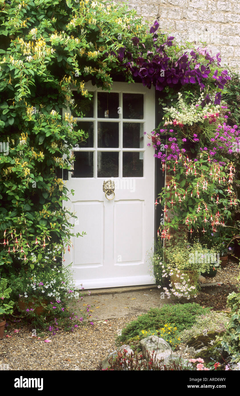 Cottage Front Door Honeysuckle Clematis Containers Lonicera Climbers Stock Photo Royalty Free