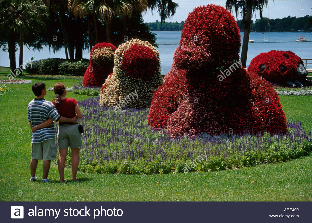 florida polk county winter haven cypress gardens couple near stock