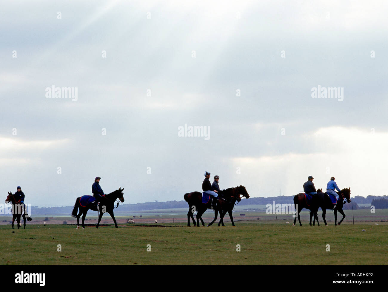 Horses exercise at the curragh ireland s flat racing venue horses exercise at the curragh ireland s flat racing venue situated in county kildare s countryside publicscrutiny Images