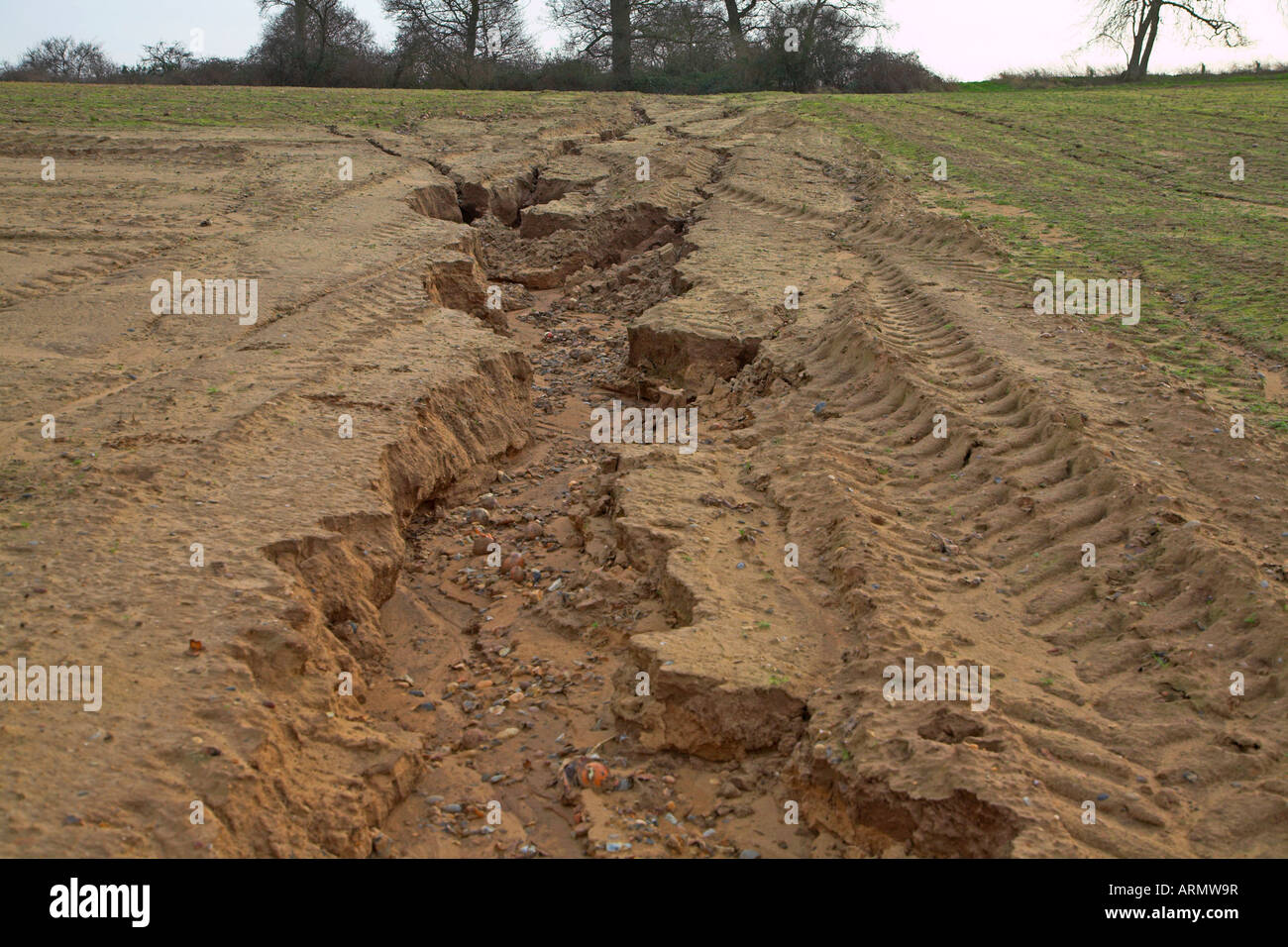 Soil erosion gulleying caused by heavy rain and downhill for Soil erosion causes