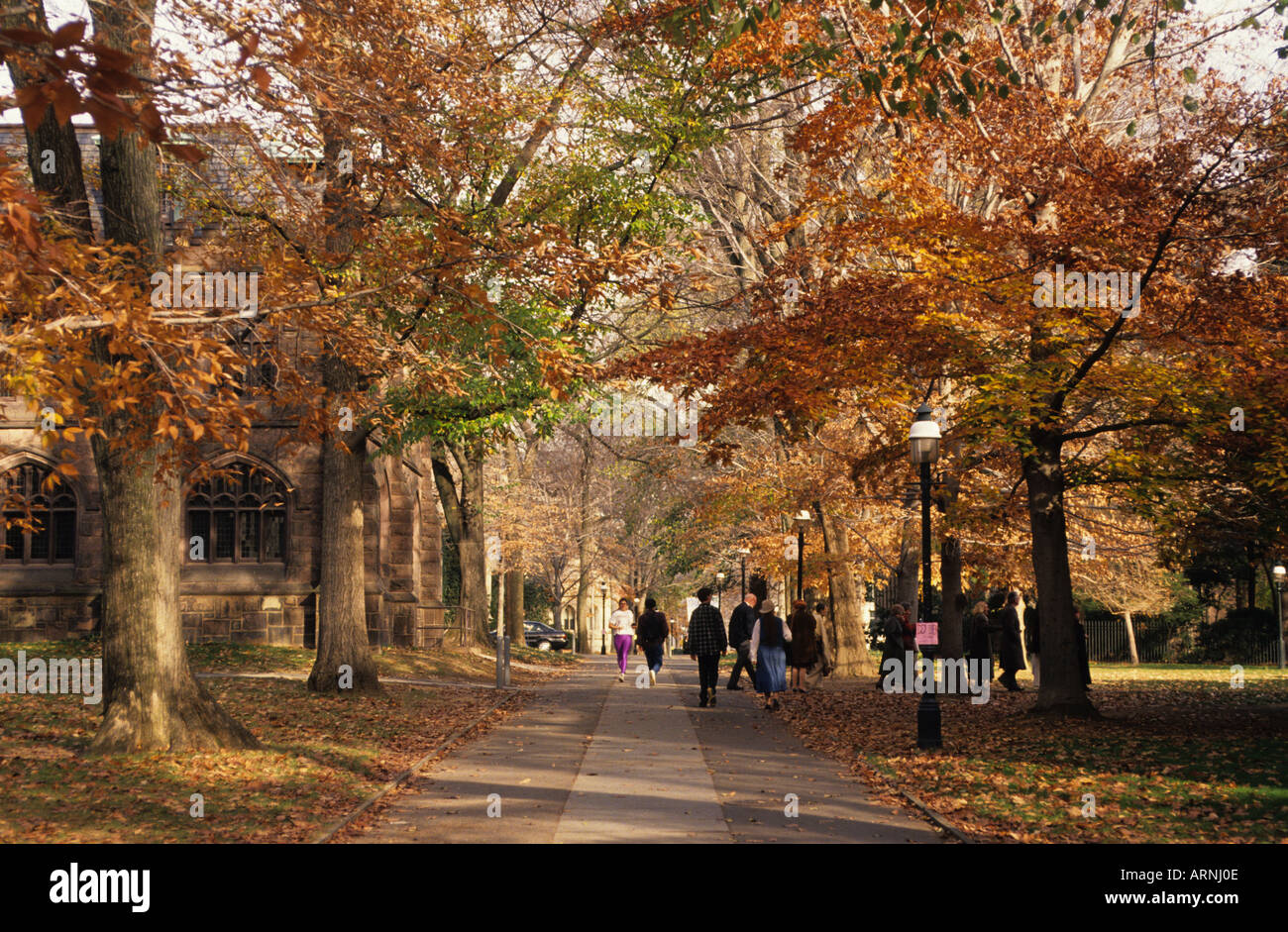 princeton new jersey princeton university campus in autumn