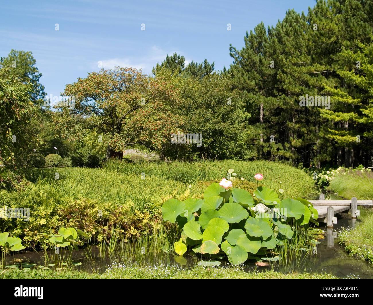 The japanese garden at the jardin botanique de montreal for Jardin quebec