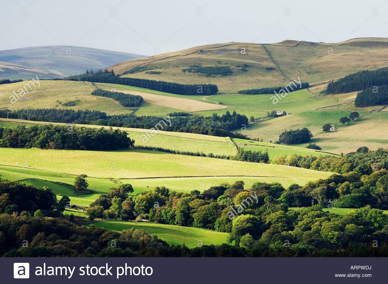 How many kilometres? of farmland are there in the UK?