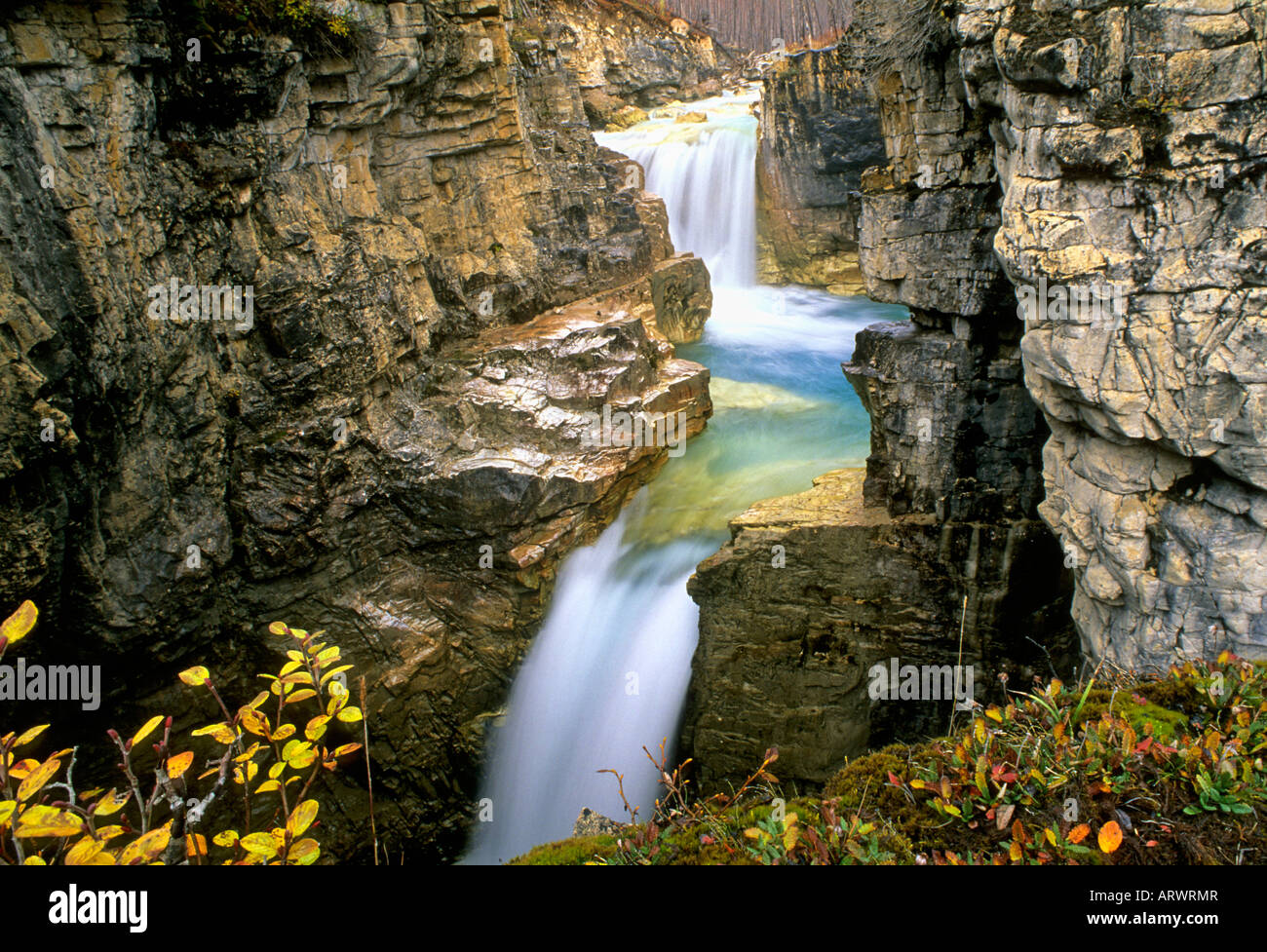 Waterfall tokkum creek marble canyon kootenay national park waterfall tokkum creek marble canyon kootenay national park british columbia canada sciox Image collections