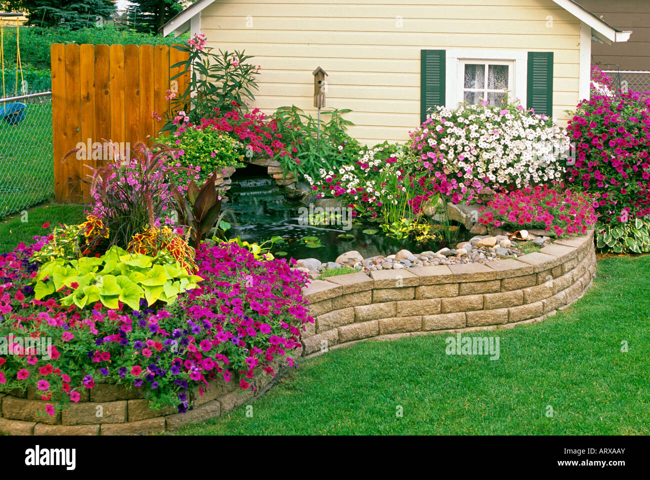 Wonderful MINNESOTA GARDEN WITH POTTING HOUSE, WATERFALL AND POND. WAVE PETUNIAS,  SWEET POTATO VINE, OLEANDER, CANNA, COLEUS AND HYACINTH