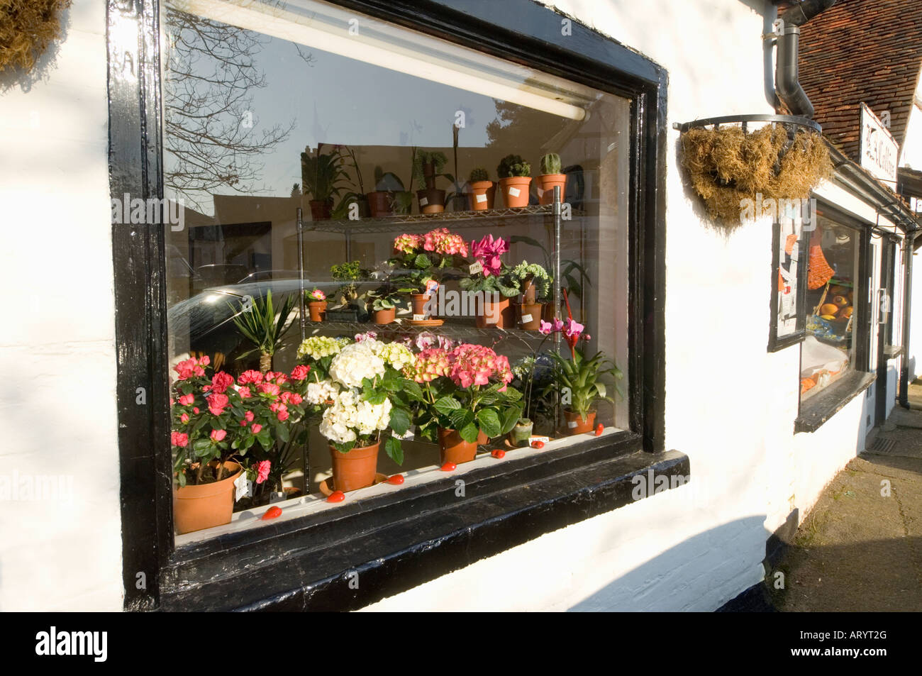 Flower Shop Shere Surrey England UK Stock Photo, Royalty Free ...