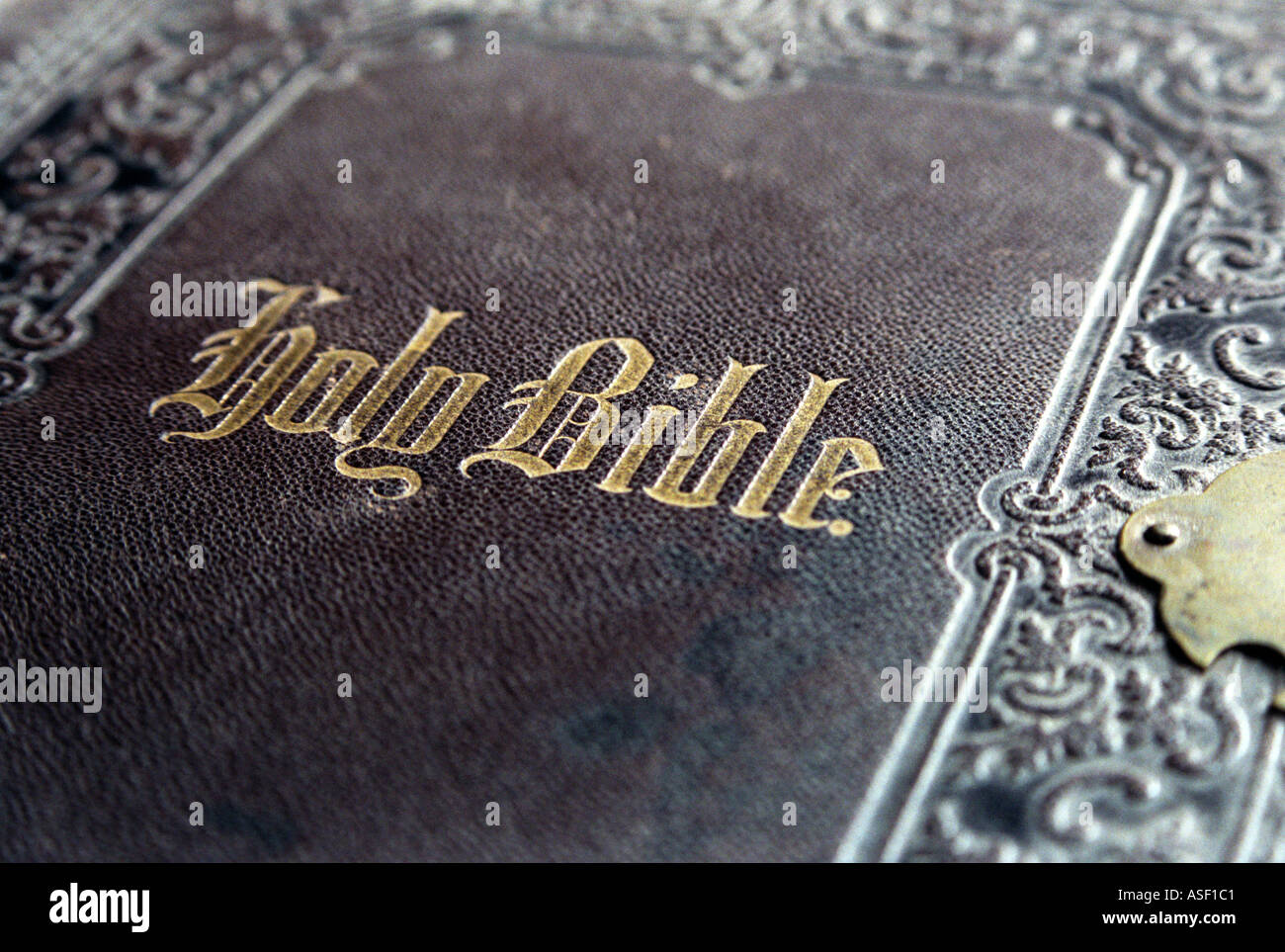 Holy Bible Cover Design