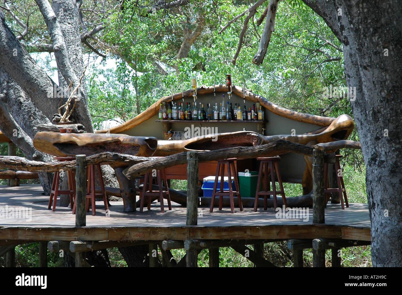 Outside Bar Outside Bar At Tubu Tree Safari Nature Reserve Okavango Delta