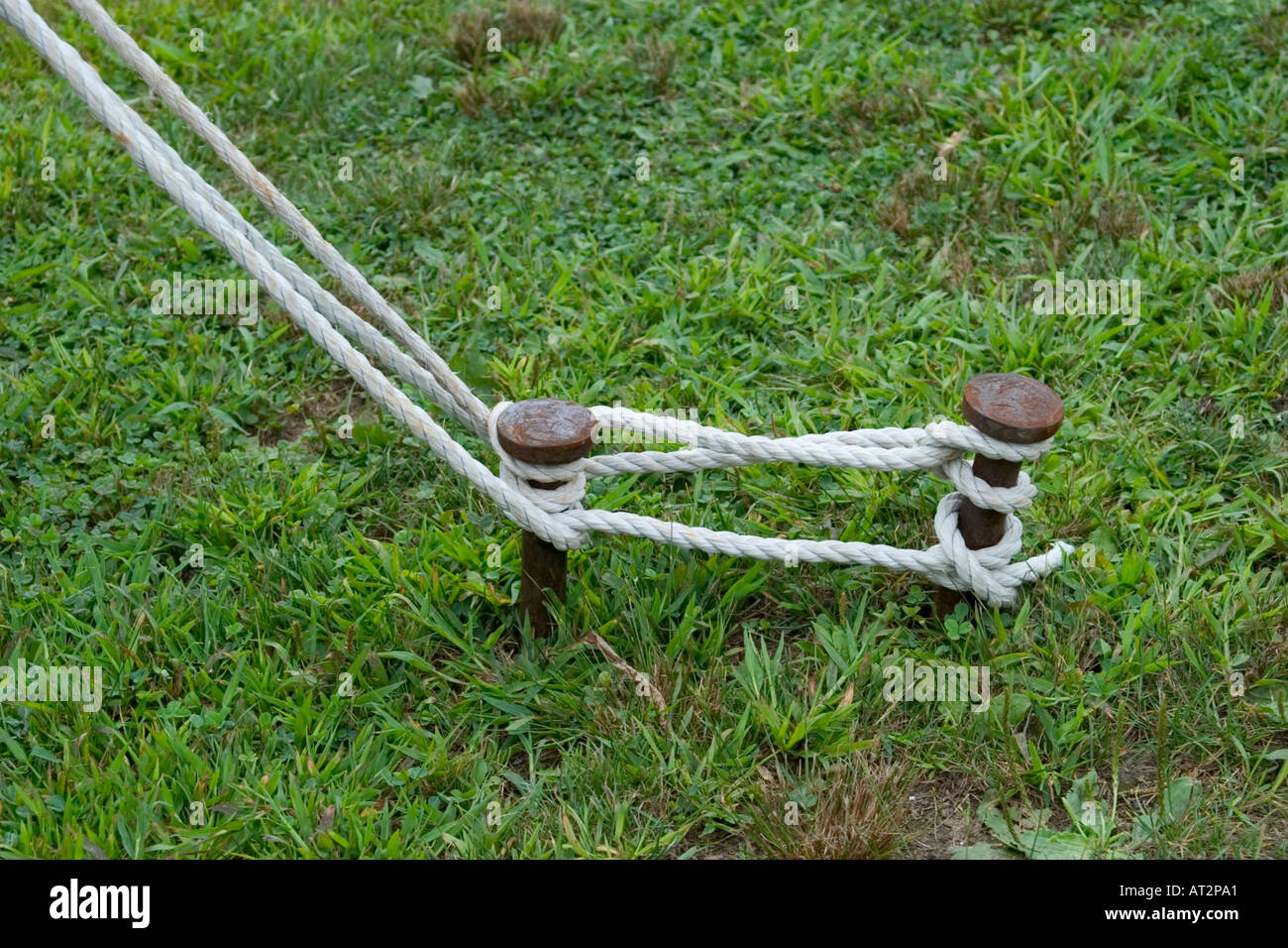 Rope from a tent tied to metal stakes in the ground & Rope from a tent tied to metal stakes in the ground Stock Photo ...