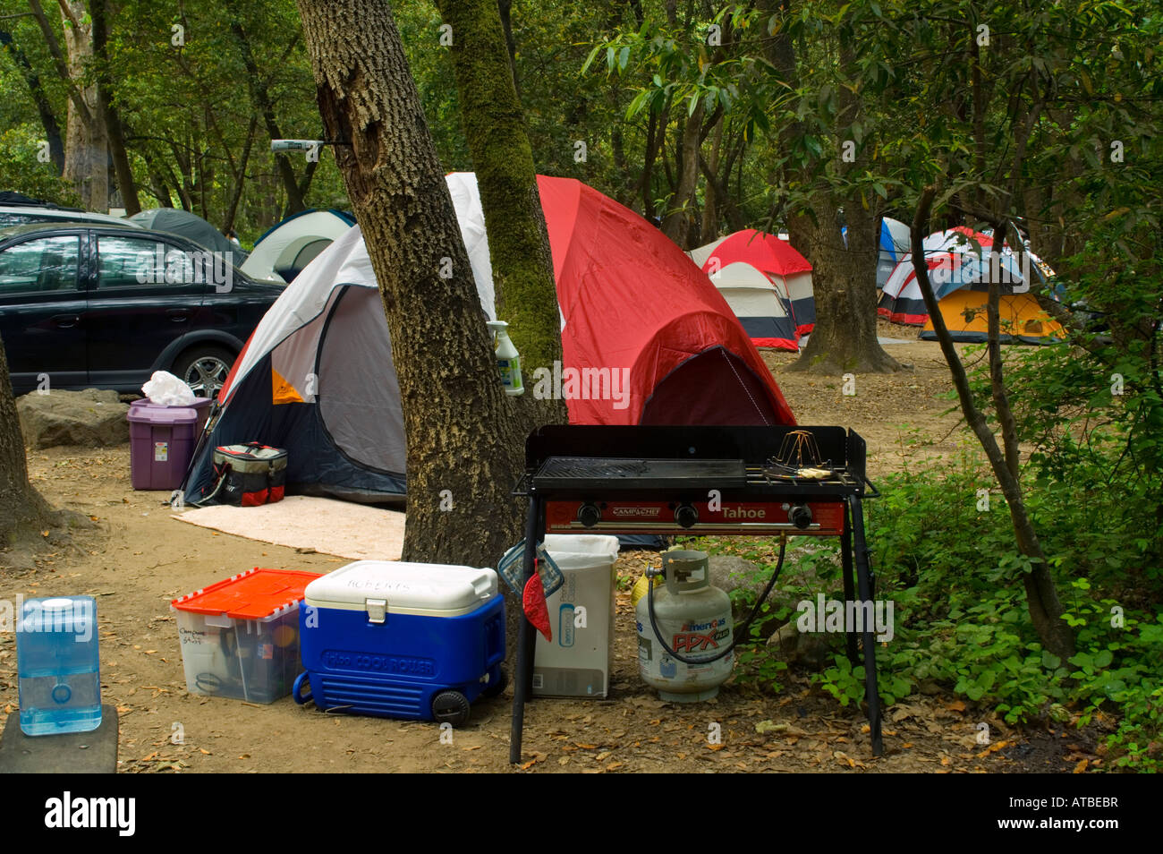 Tent C&ing at Pfeiffer Big Sur State Park Monterey County California & Tent Camping at Pfeiffer Big Sur State Park Monterey County Stock ...