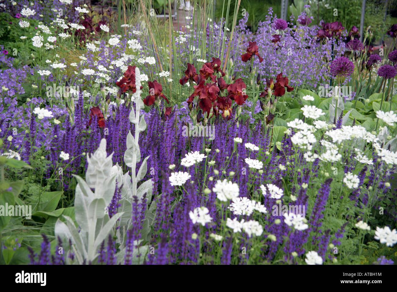 garden designed by Tom Stuart Smith for the RHS Chelsea Flower Show Stock Pho