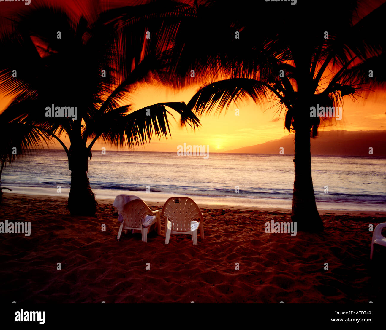 Two Beach Chairs Sit Between Palm Trees Silhouteed Against An Orange Sky At Sunset On Napili Maui Hawaii
