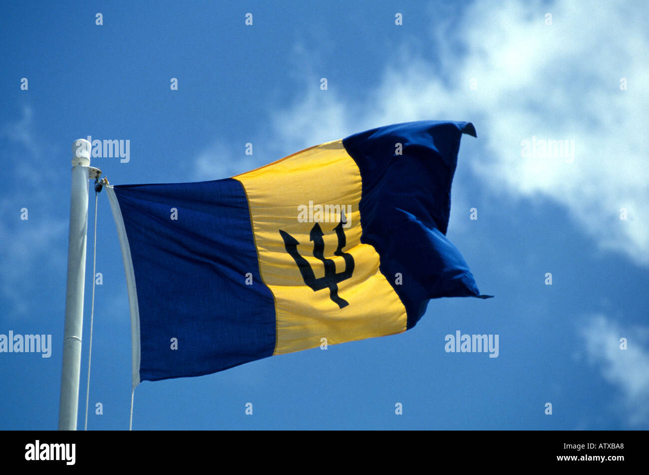 Barbados West Indies National Flag Symbol Blowing In Breeze Blue Sky Caribbean