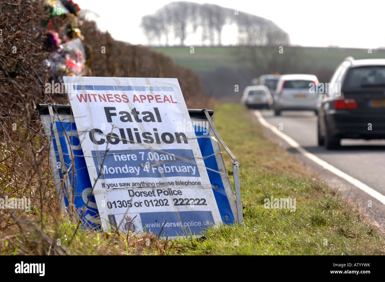 stock photo witness appeal sign following a fatal car accident