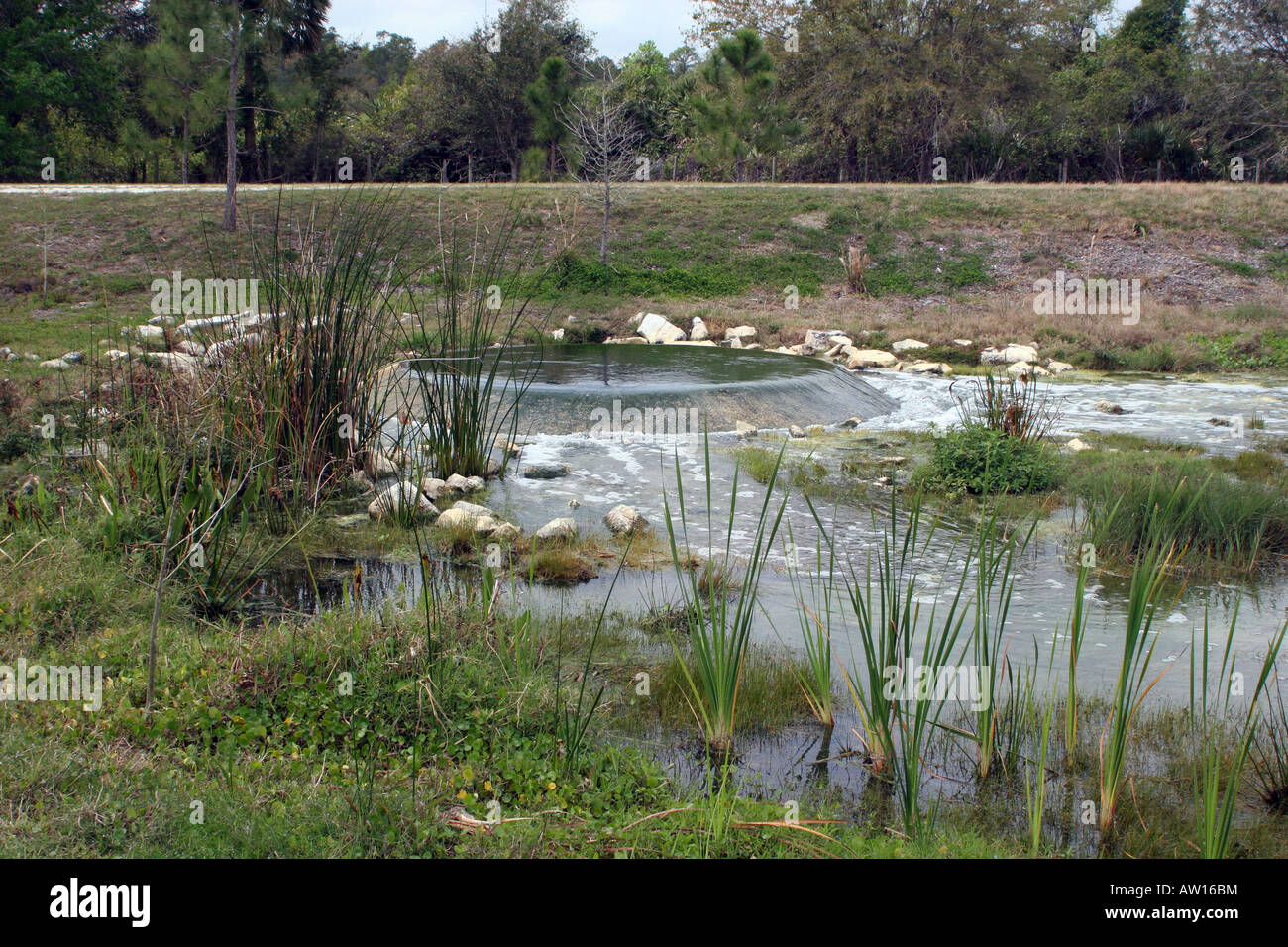 Influent at the Orlando Wetlands Park in Christmas FL where Stock ...
