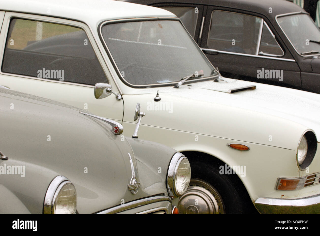 a line row of classic cars on display at a show in the summer on the ...