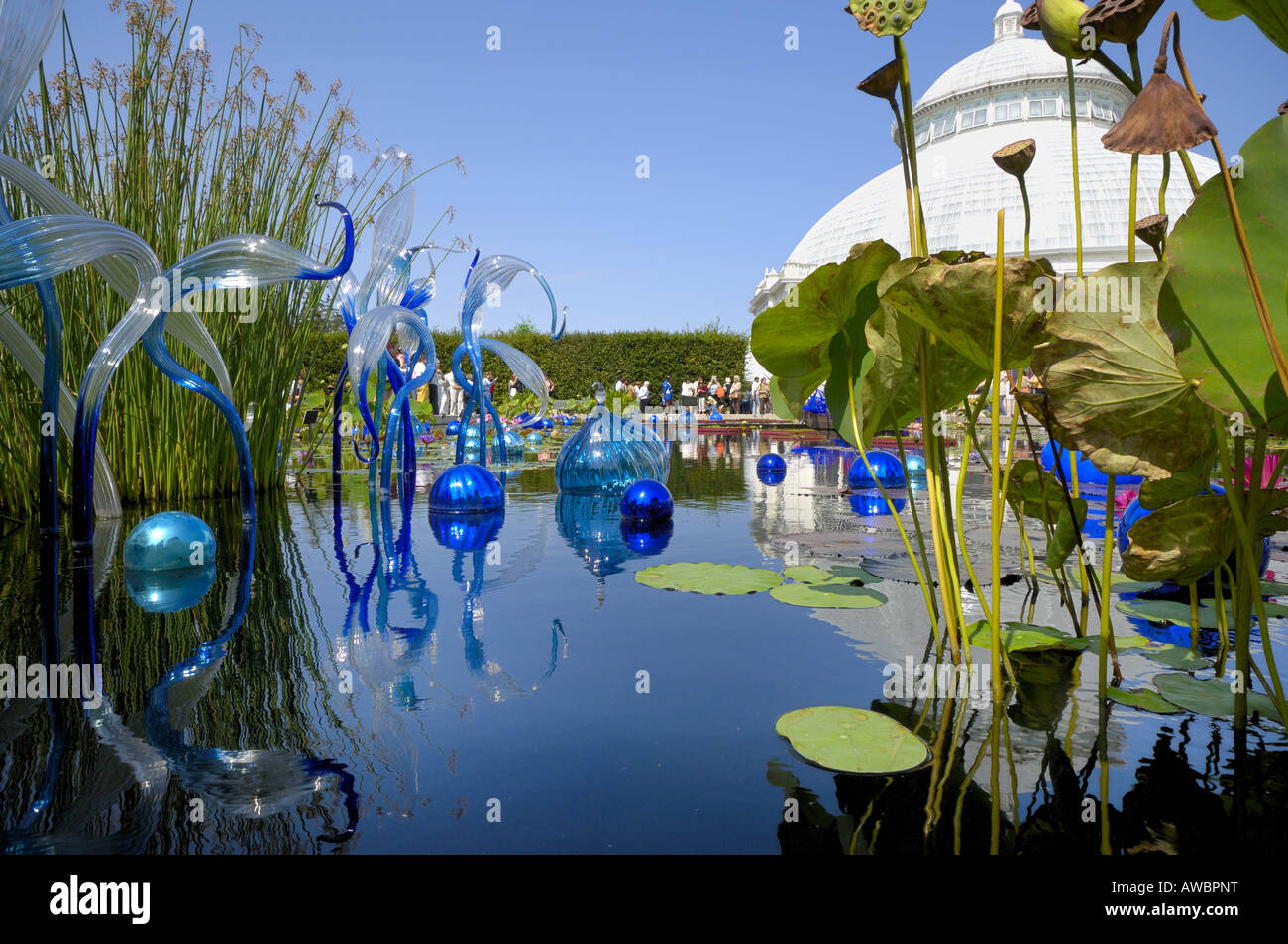 The Dale Chihuly Glass Sculpture Exhibition At The New York Botanical Stock Photo Royalty Free