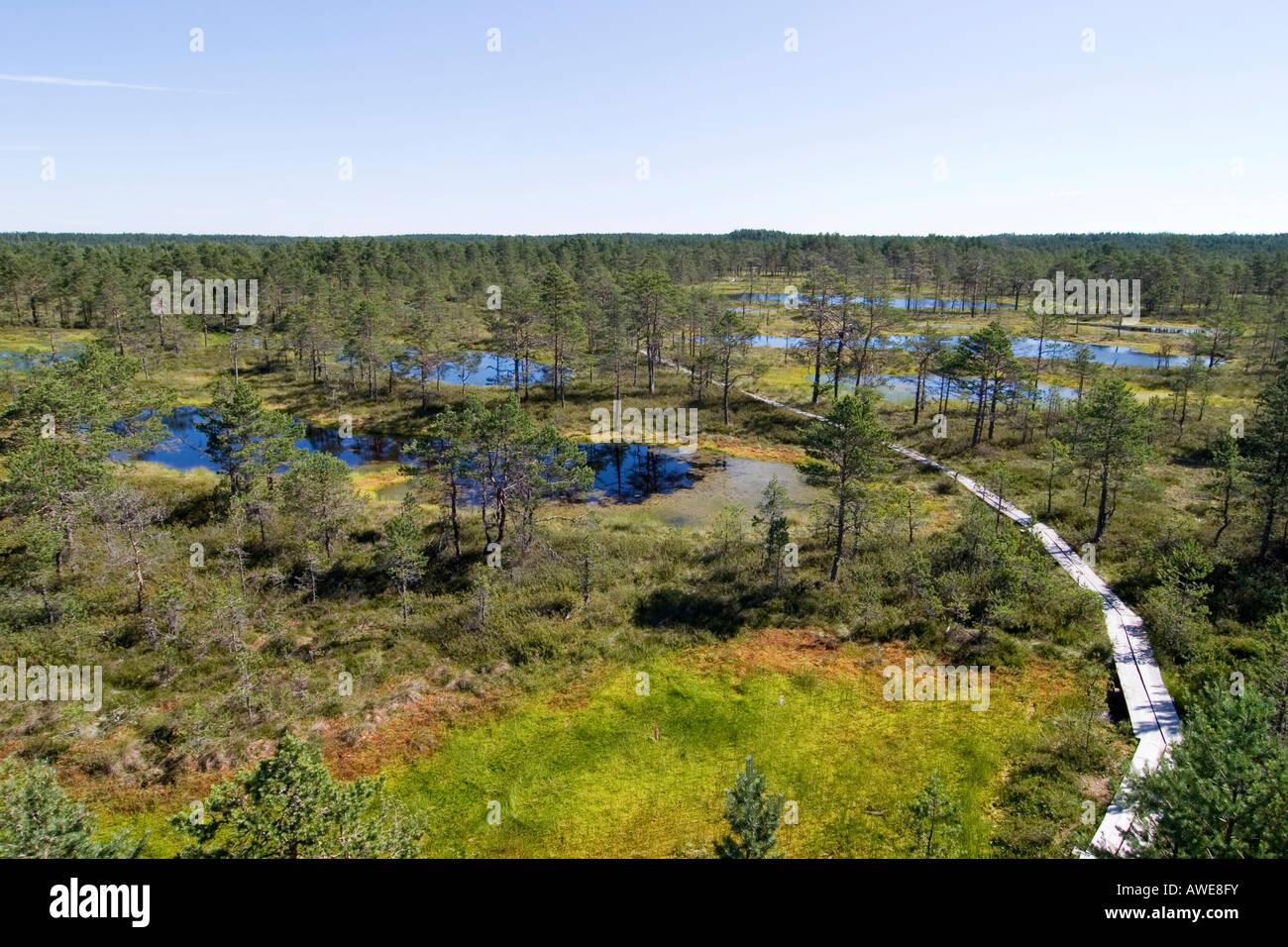 Stock photo viru raba marsh landscape in lahemaa national park estonia europe