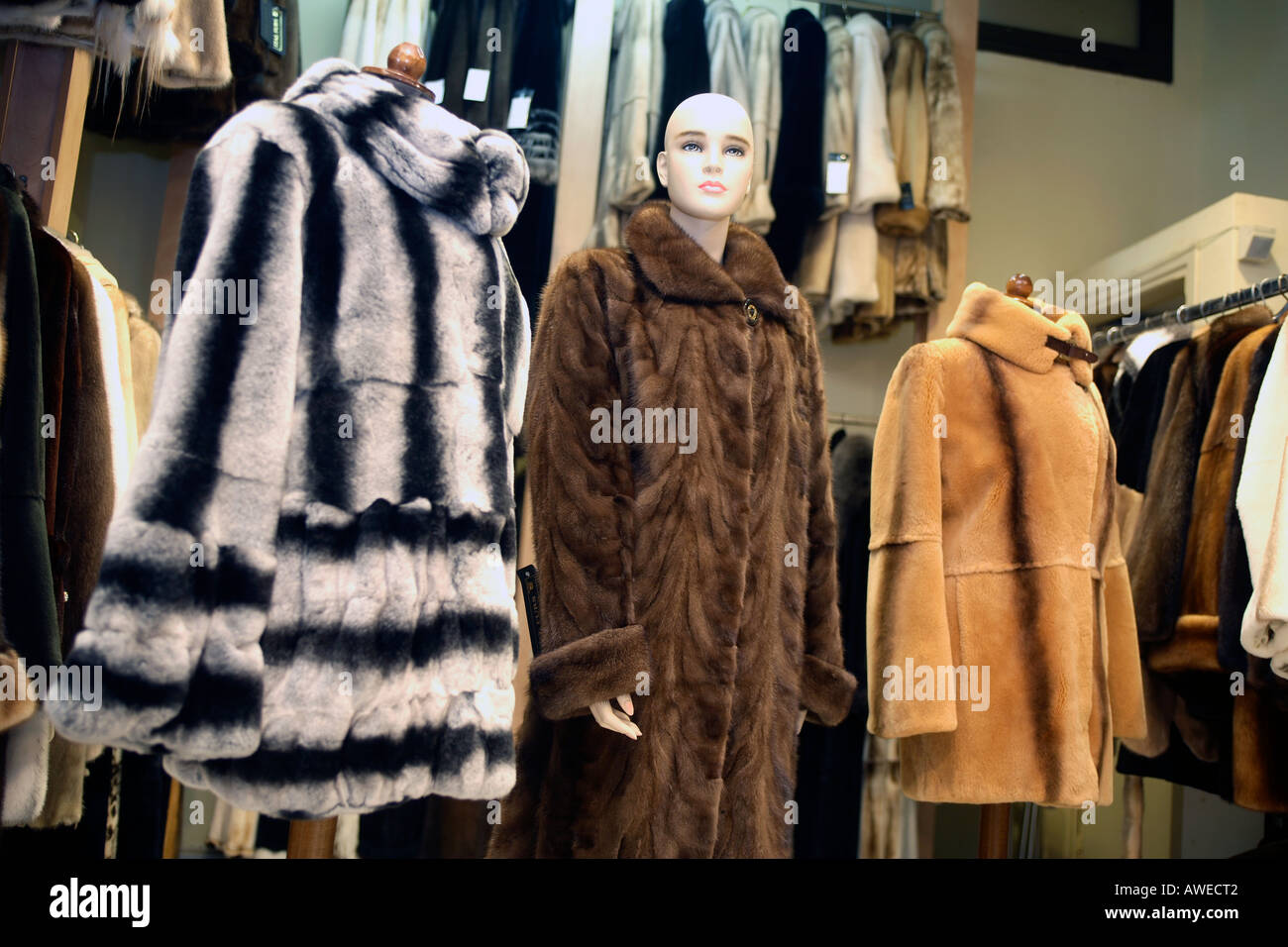 Greece Mainland Halkidiki Kassandra Interior Of Shop Selling Fur ...