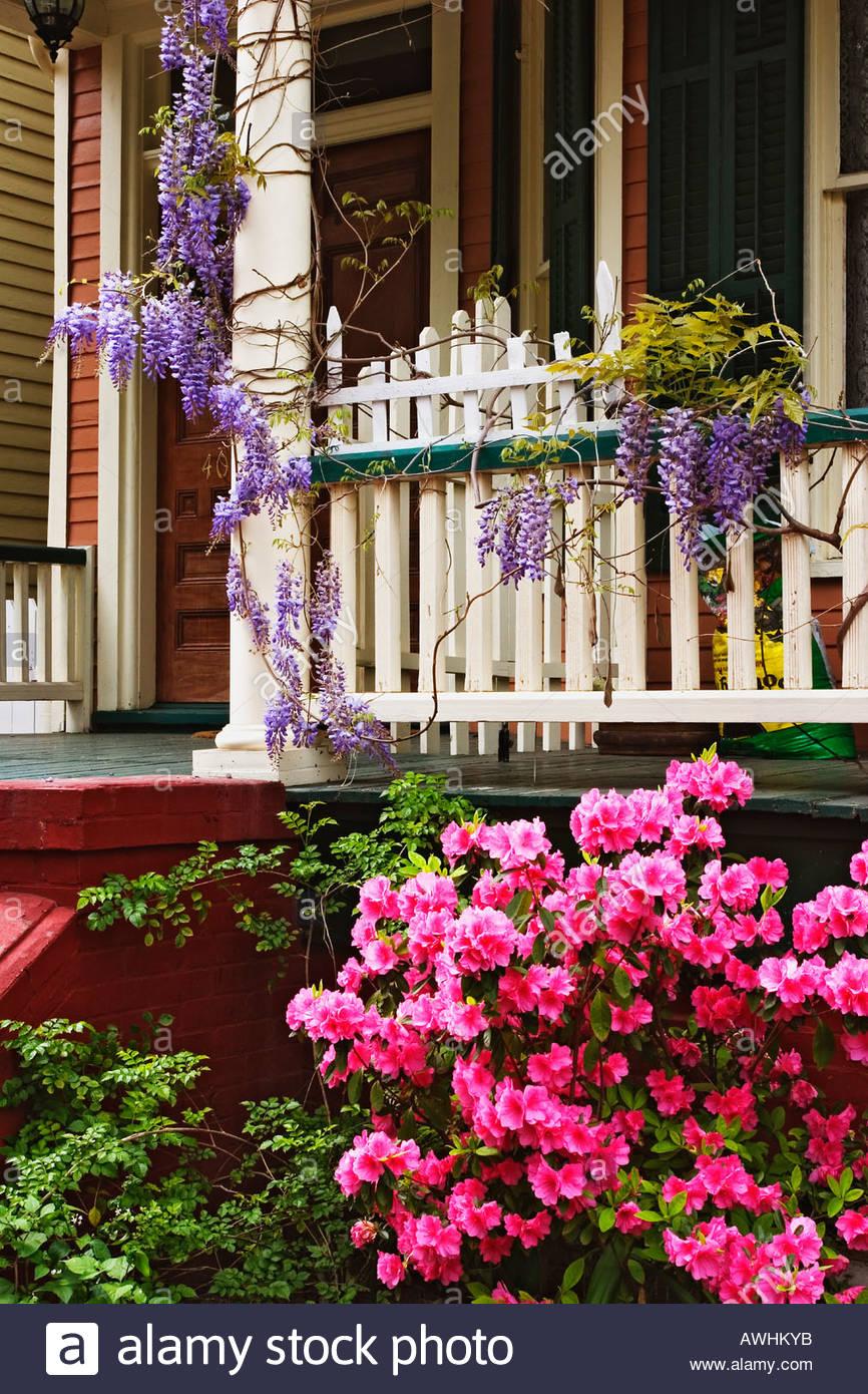 Azaleas And Wisteria Around Front Porch Of An Antebellum Home In Savannah Georgia