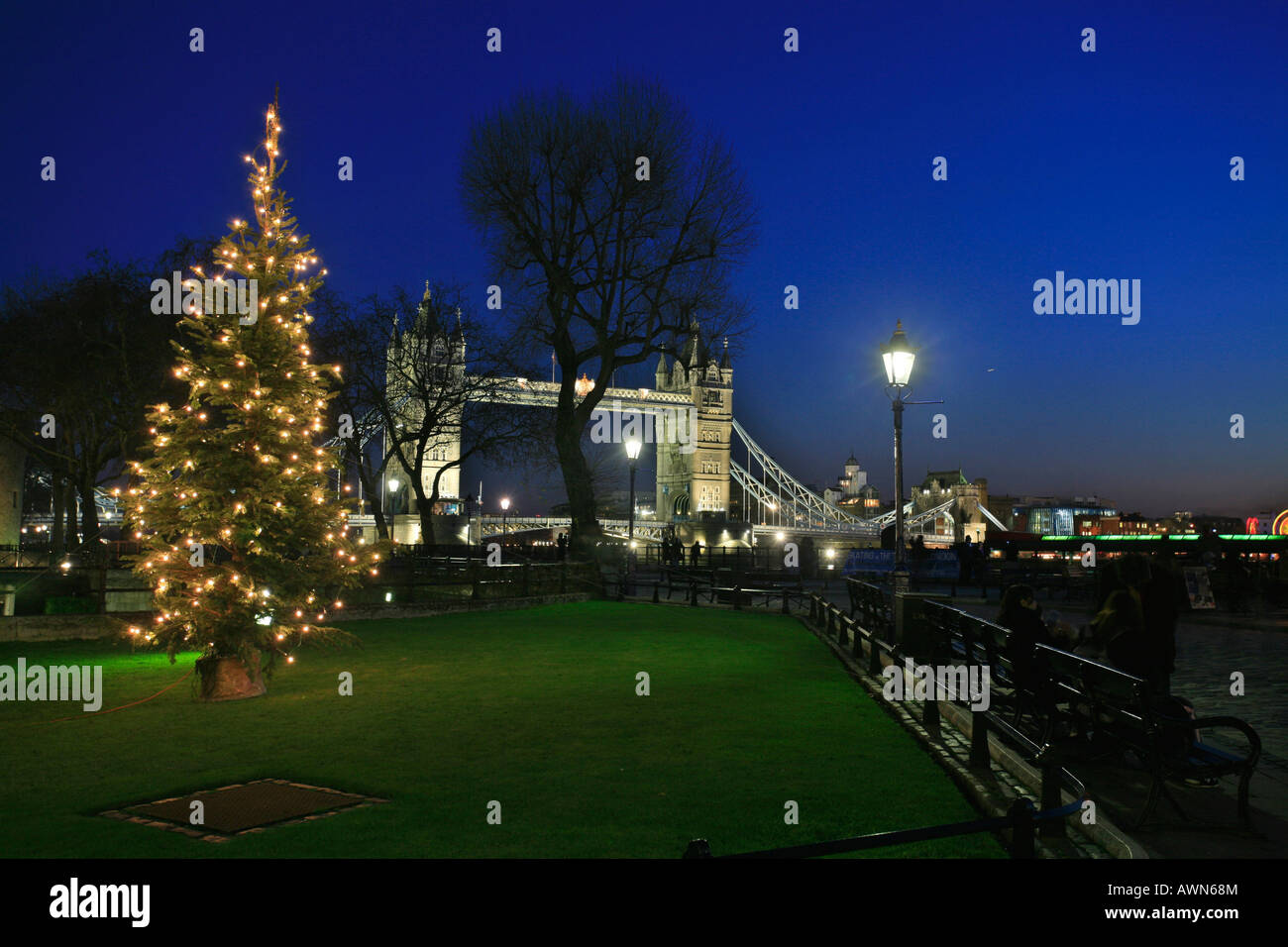 Christmas Tree Scenery Part - 44: Christmas Scenery With Tower Bridge And Christmas Tree, London, UK
