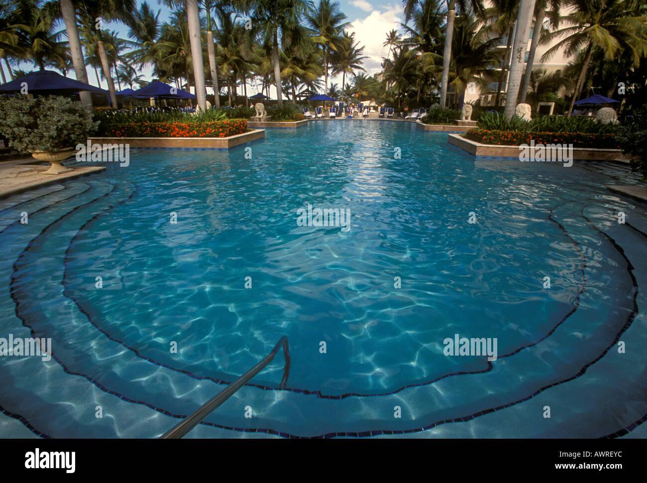 swimming pool ritz carlton san juan hotel spa and casino stock photo royalty free image