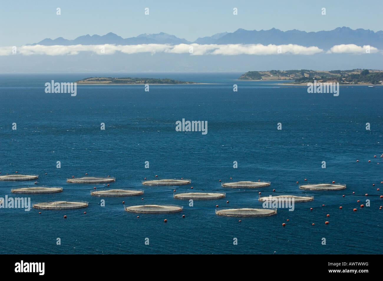 Aquaculture salmon farm, Marine Harvest, near Puerto Montt ...