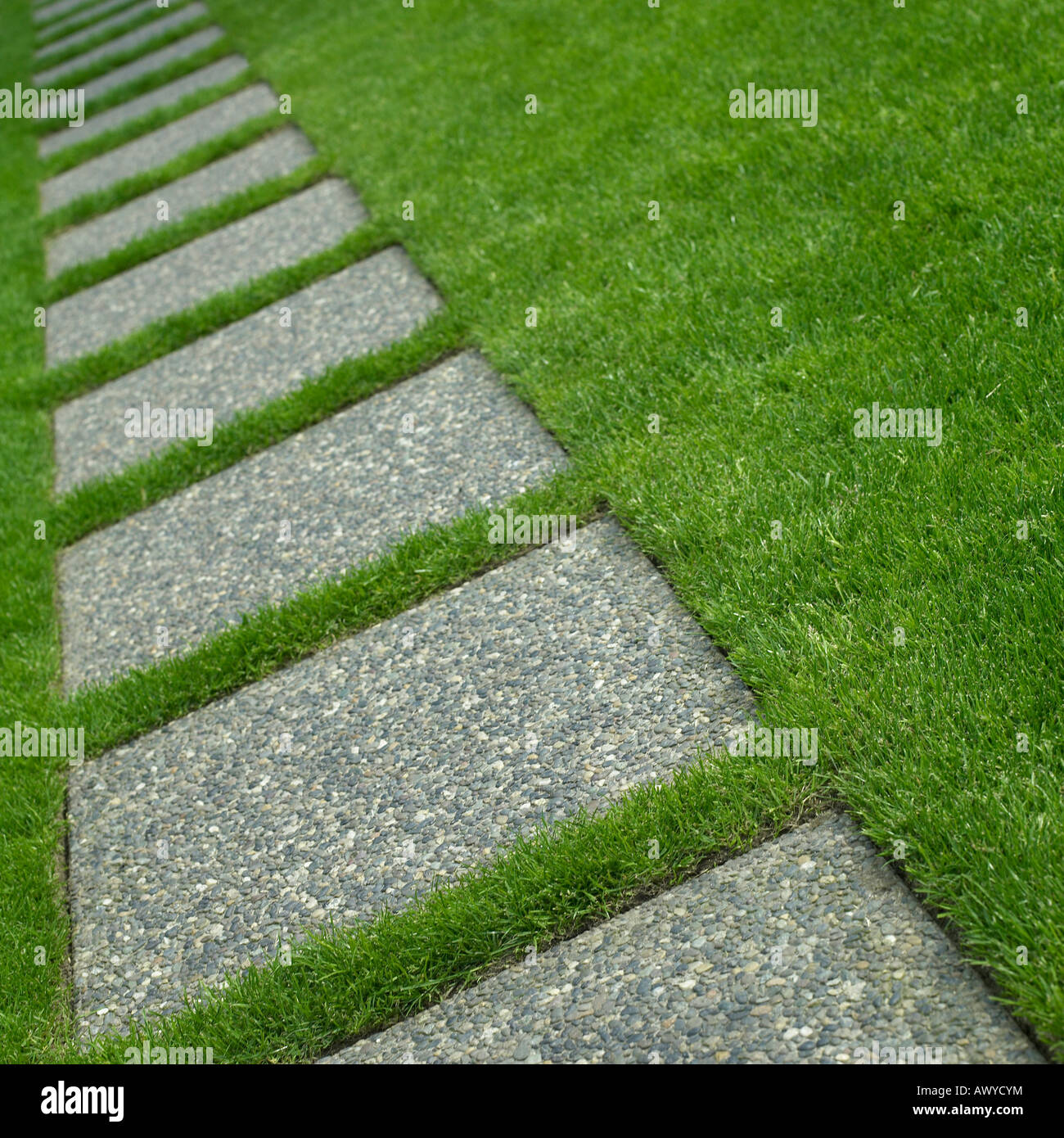 Stone walkway through grass stock photo royalty free for Stone path in grass