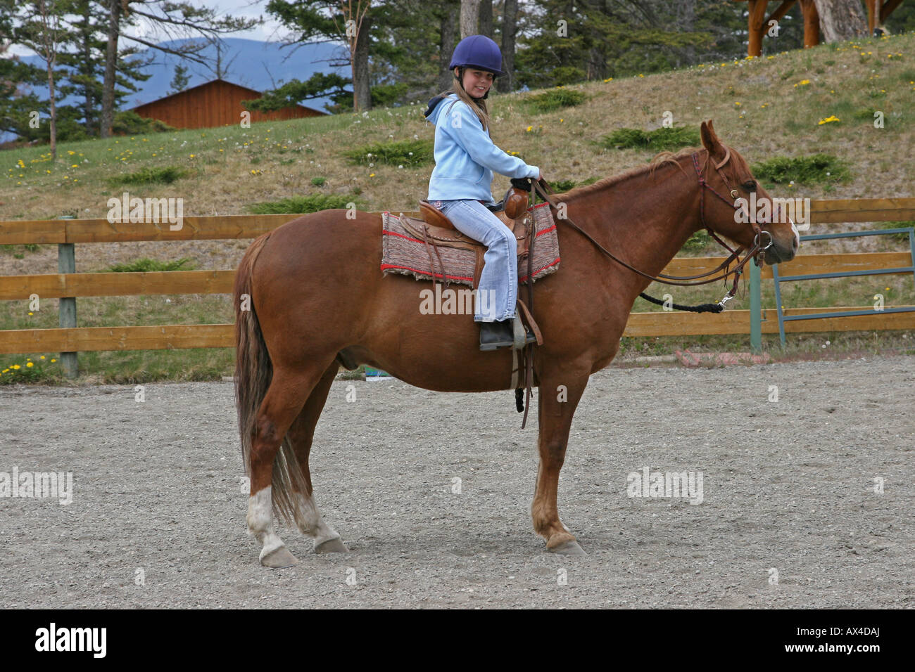 Young girl riding a chestnut horse western style Stock ... - photo#30