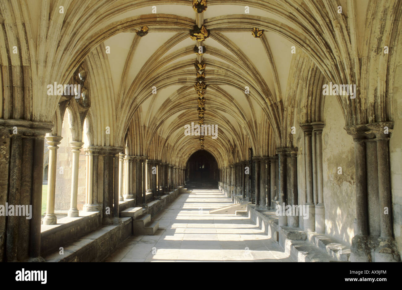 norwich cathedral cloisters medieval architecture vaulting