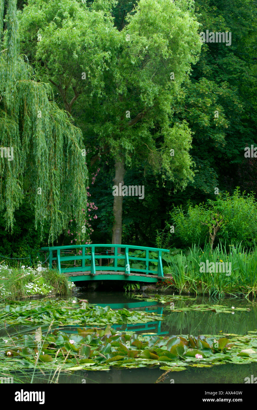 Water garden water lily pond with japanese bridge at for Japanese garden pond bridge
