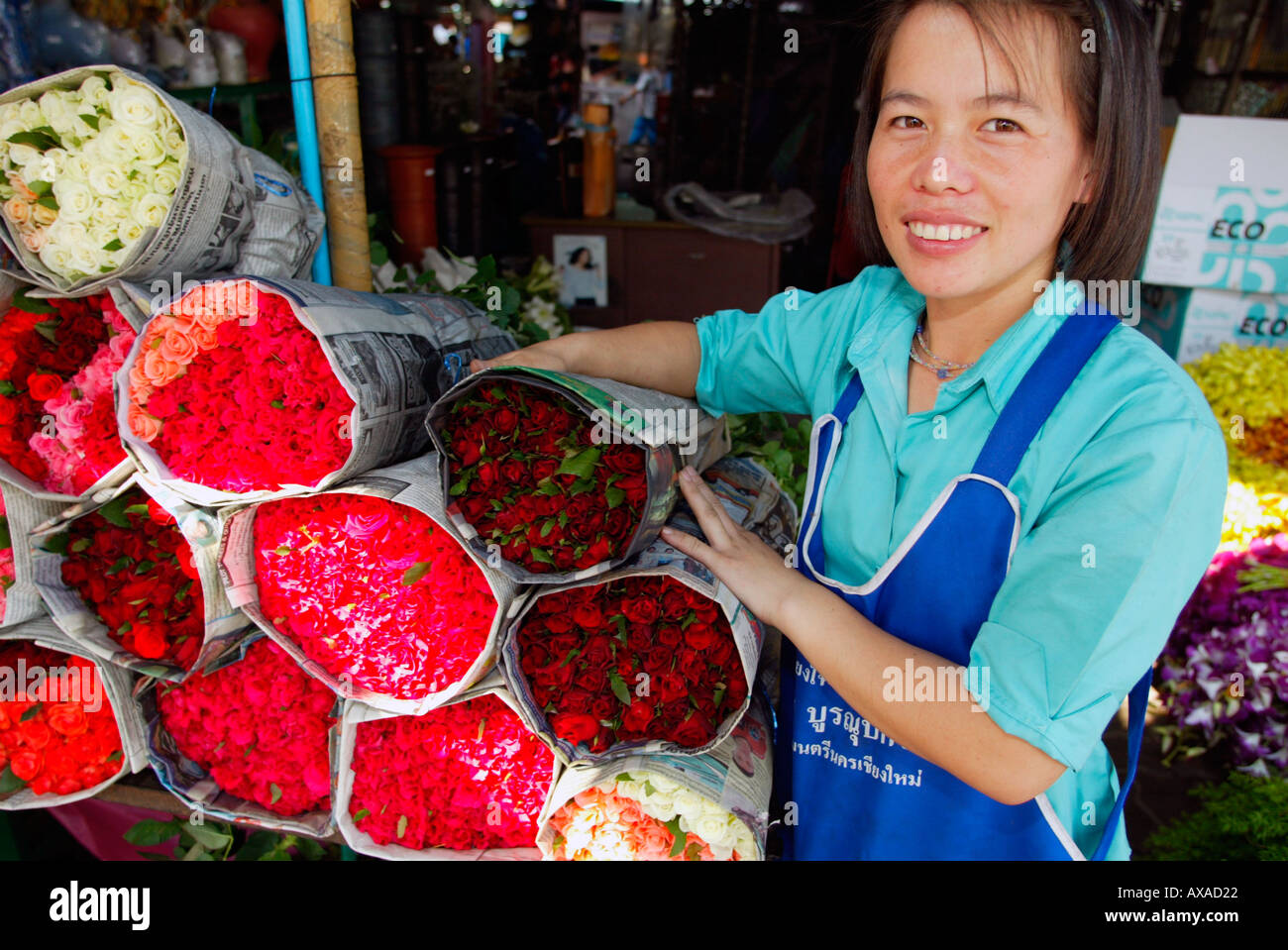 shop assistant pink white and red roses chiang mai flower shop assistant pink white and red roses chiang mai flower market north thailand