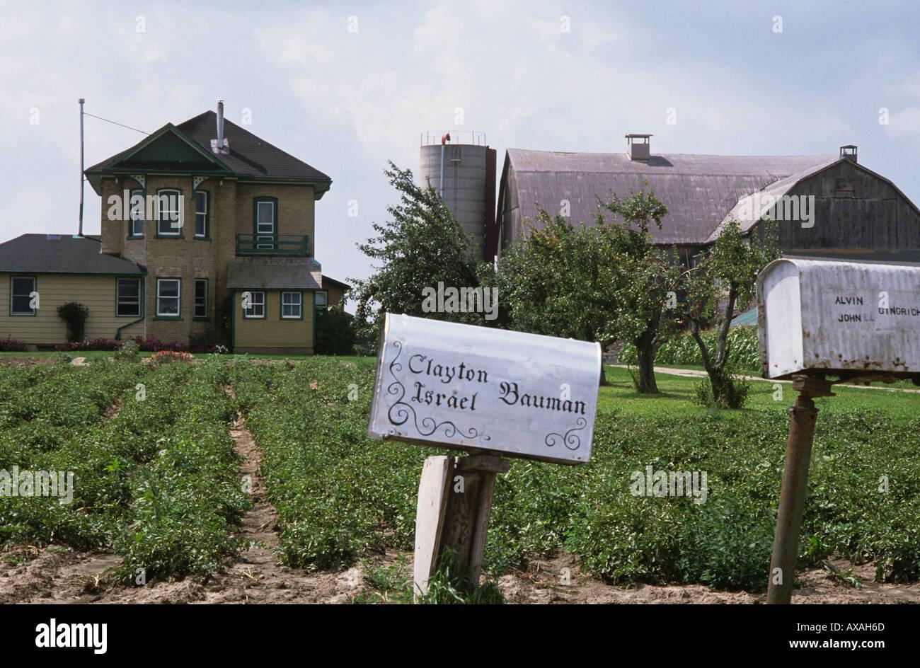 Mennonite Farm near Kitchener Ontario CANADA Bauman is a very ...