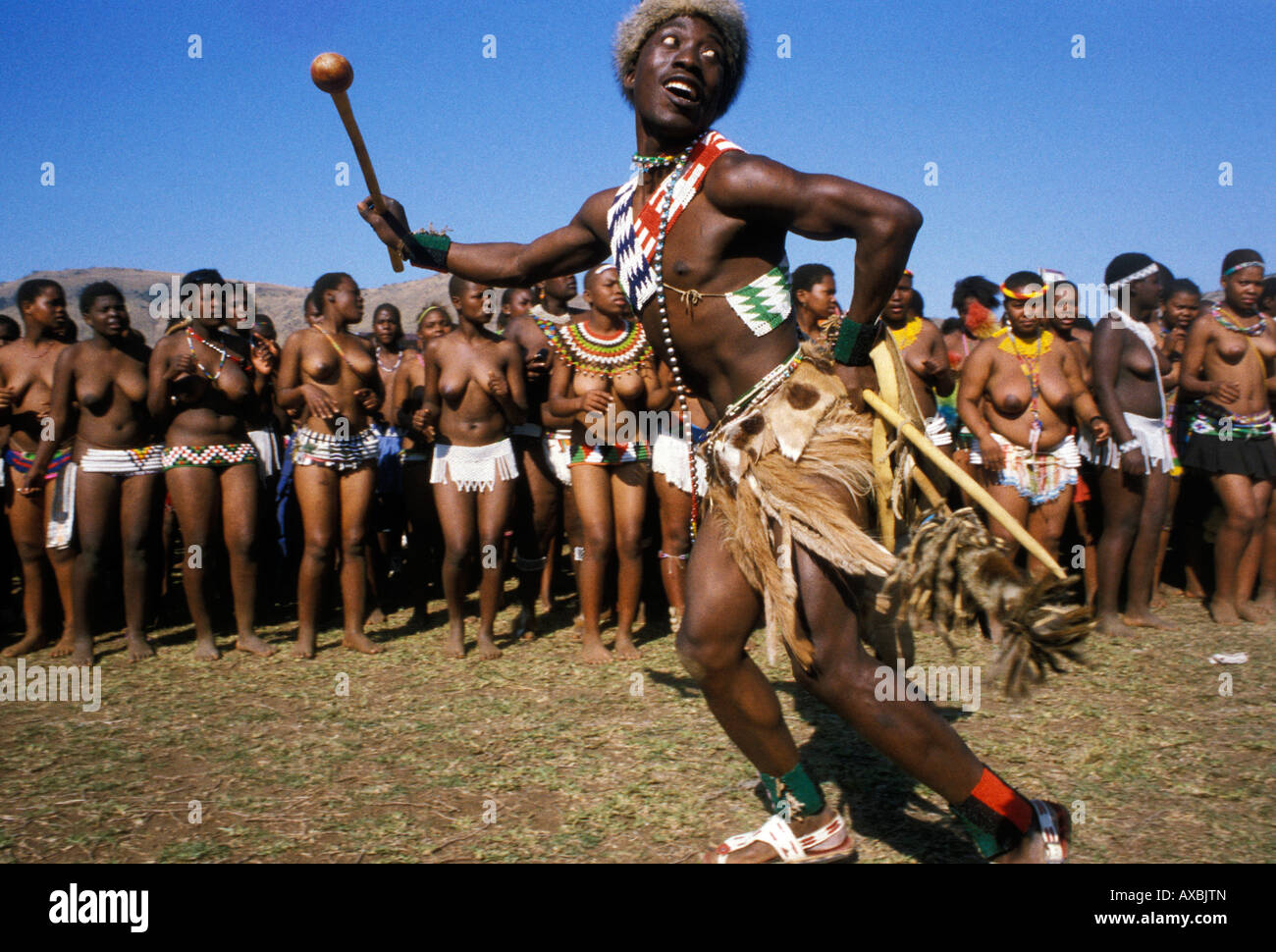 Reed Dance Ceremony Scene Kwa Zulu Natal South Africa