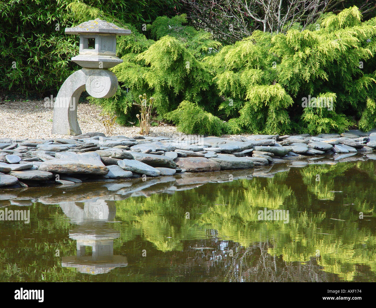 Japanese Garden Pond Pool Hadlow College Kent Broadview Gardens Oriental  Garden Pond