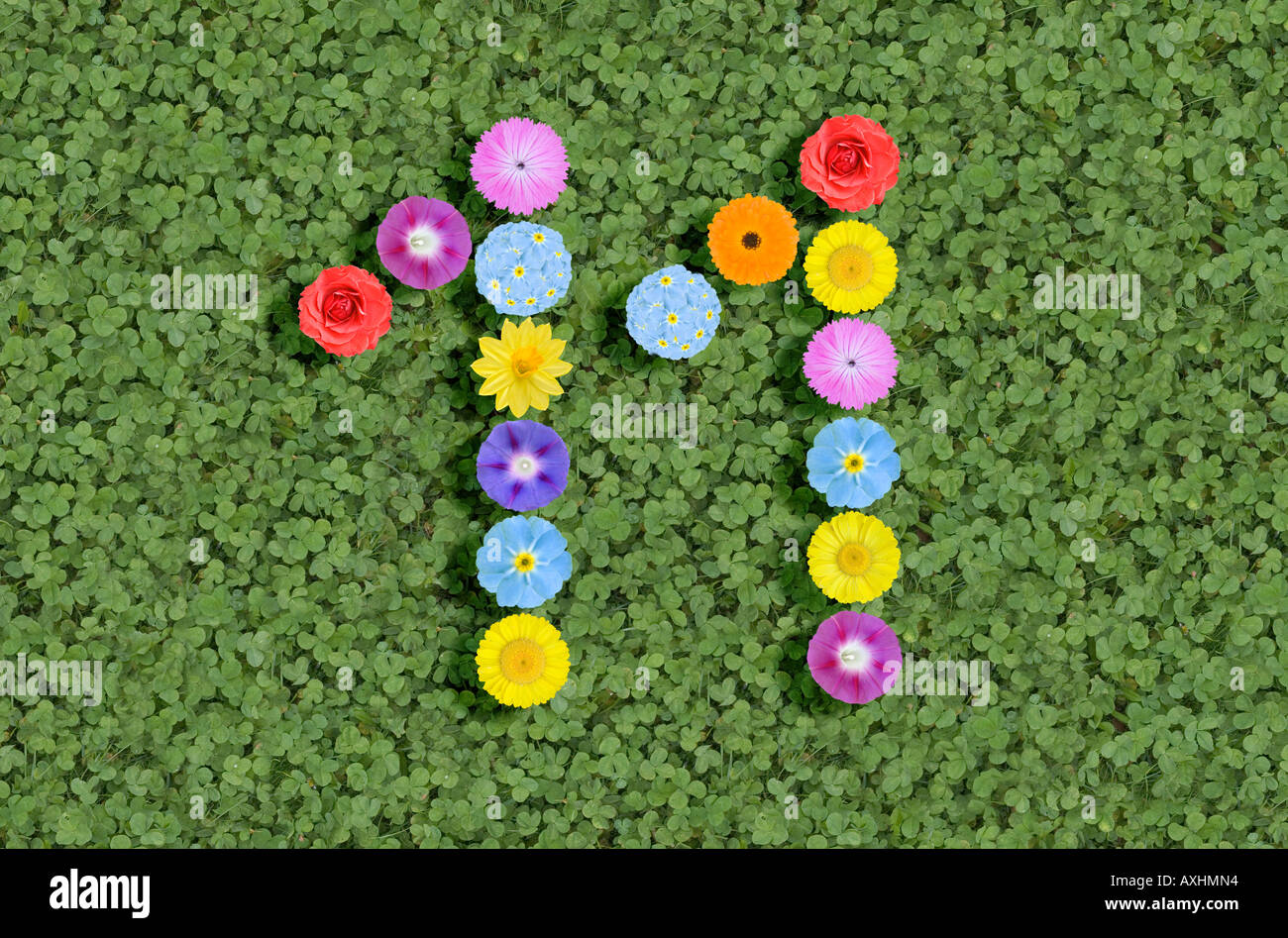 Number 11 Written With Flowers Stock Photo Royalty Free Image 9628755