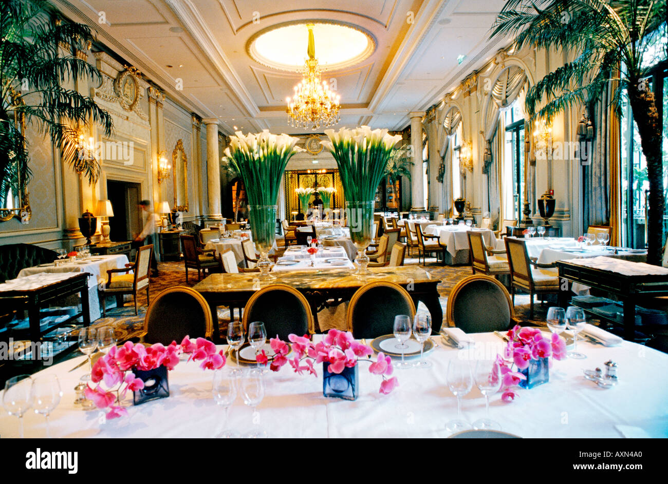 Paris france palace french restaurant le v le cinq for Restaurant cuisine francaise paris
