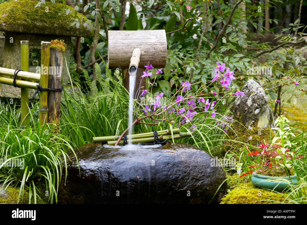 Traditional stone japanese water feature gioji temple for Water in japanese