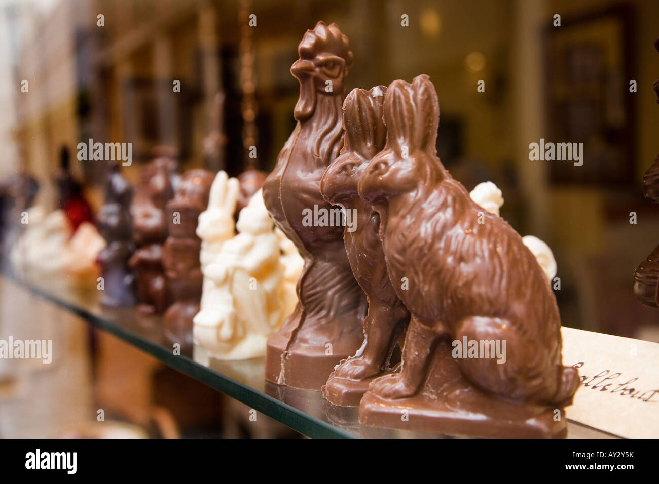 Dark and white milk Belgian chocolate animals in Belgium chocolate ...