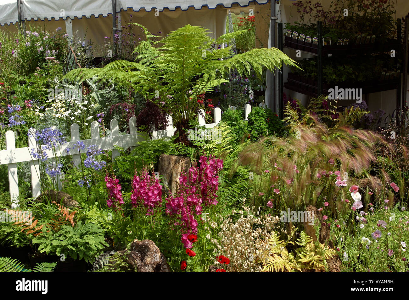 Uk cheshire knutsford tatton hall rhs flower show well for Garden design knutsford