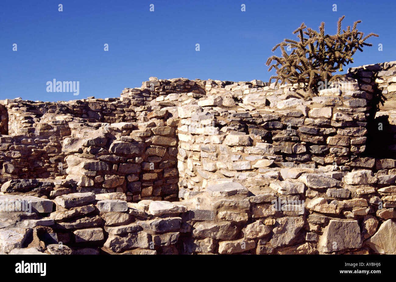 Ancient anasazi stone and adobe homes at gran quivira for Adobe construction pueblo co