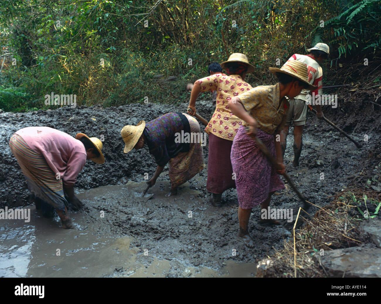Myanmar Burma Shan State women at work digging in mud at water